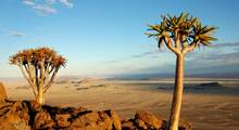 12 Day Southern Namibia Tour