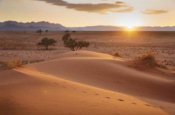 Namibia has drastically varied desert landscapes