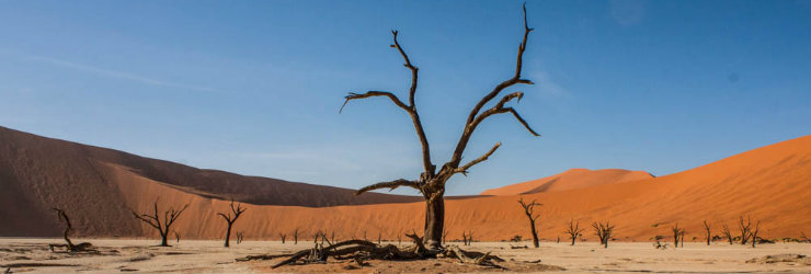 The famous red dunes in Sossusvlei, Namibia