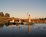 8 Day Delta & Chobe Overland