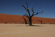 20 day overland tour, Namibia