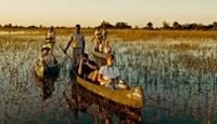 6 Night Victoria Falls, Chobe & Okavango Fly In Safari