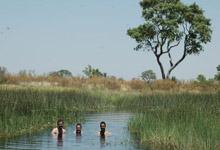 Okavango Delta channel swim