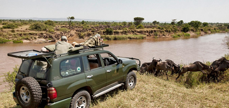 Wildebeest crossing the river in the northern Serengeti, Tanzania