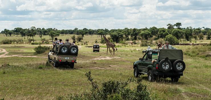 Northern Serengeti with Alex Walker's Safaris