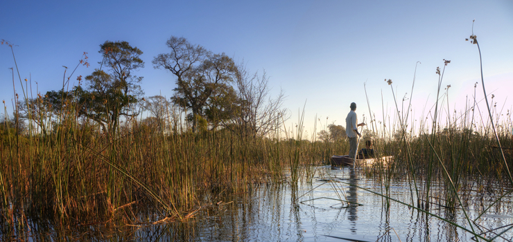 A guided mokoro (traditional dugout) is a popular means to explore the waterways