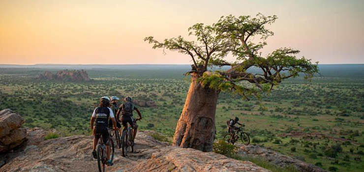 Tuli is baobab country with breathtaking scenery