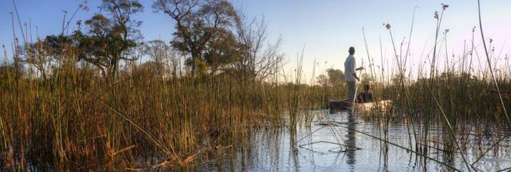 Mokoro boat in the Okavango Delta