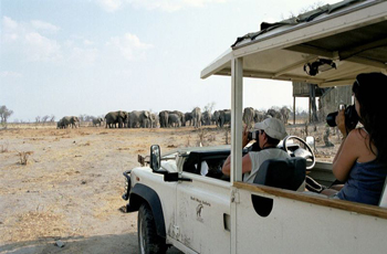 Custom designed safari vehicle with Bushways