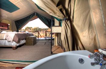 Tent Interior, Camp Savuti