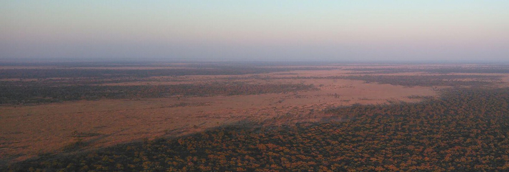The vast wilderness of Chobe from an early morning hot air balloon flight
