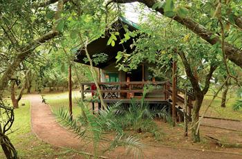 Tented Accommodation, Falaza, Kwa Zulu Natal, South Africa