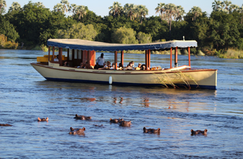 Boat cruises above the falls great for viewing hippo