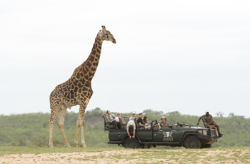 On safari at Inyati Game Lodge, Sabie Sands, South Africa