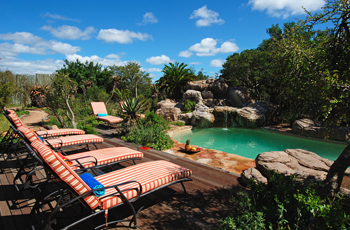 Swimming Pool, Ukhozi Lodge, Kariega Game Reserve