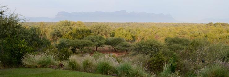 View from Kaya Ndlovu