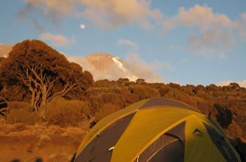 View of Kilimanjaro from a campsite