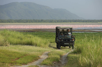 Lake Manyara with pink flamingos in the distance