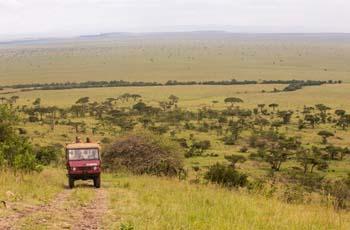 On Safari at Masai Mara, Kenya