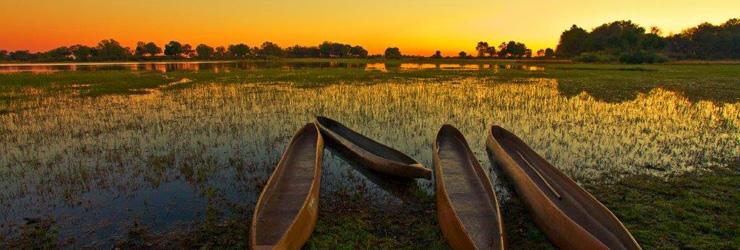 Mokoro dug outs, Okavango Delta, Botswana
