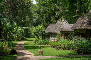 Mountain Village Lodge, Arusha, Tanzania