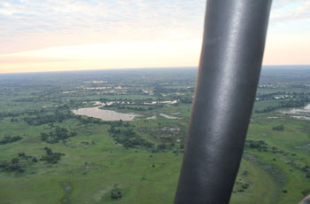 Okavango Delta in the early morning from the air