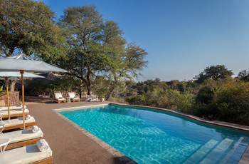 Thornybush Game Lodge - Swimming Pool