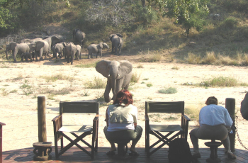 Elephants and other wildlife sometimes pass the deck at Rhino Post Safari Lodge