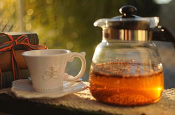 Rooibos Tea is a truly South Africa experience