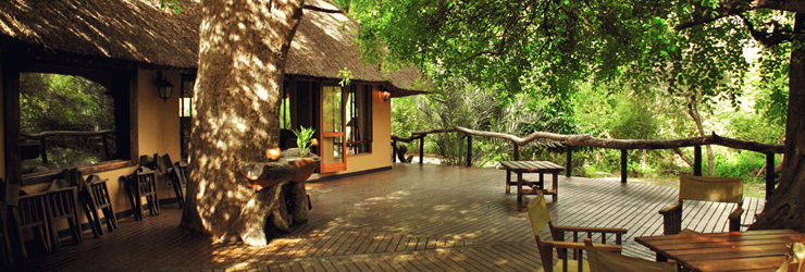 Royal Tree Lodge, Maun, Botswana