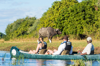 Canoe Safari on the Zambezi River