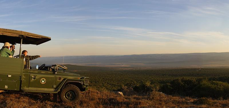 Game drive at the Addo National Park, Eastern Cape