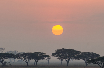 Sunrise over the Serengeti, Tanzania