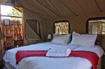 Shindzela Tented Camp, Timbavati, Kruger Park area