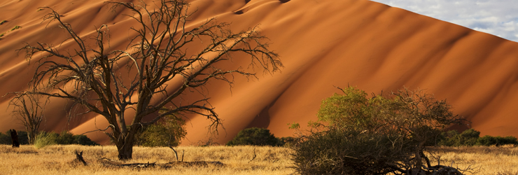 Sossusvlei, a highlight on this 7 day self-drive of Namibia