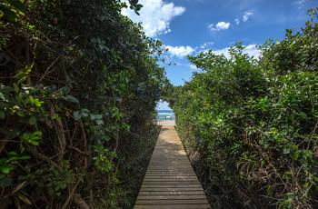 Walkway to the beach, Thonga Beach Lodge
