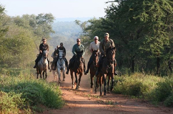 Horseback Safari near Kruger Park - Wait a Little Safaris