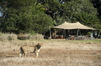 Busanga Bushcamp, Kafue, Zambia