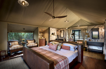 Tent Interior, Bateleur Camp