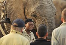 Elephant Back Safaris, Camp Jabulani