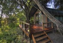 Accommodation at Camp Okavango