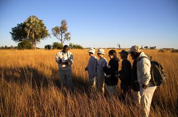 A walking safari at Camp Okavango