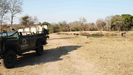 Safari in the Kruger National park