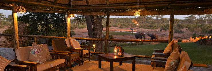 Elephants at Elephant Valley Lodge, near Chobe
