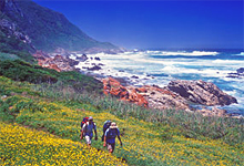 Hiking from Hunters Country House, Garden Route