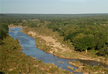 Londolozi Game Reserve adjacent to Kruger National Park