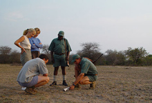 Interpretive walking safaris, Kruger Park