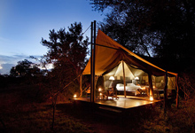 Plains Camp, Kruger National Park