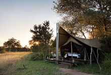 At Plains Camp in the Kruger Park, guests arrive to a permanent camp after their walking safari