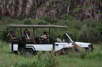Savuti is best known for it's lion, leopard & hyena sightings